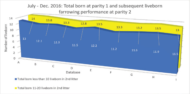 July-dec 2016 total born at parity 1 and subsequent liveborn farrowing performance at parity 2