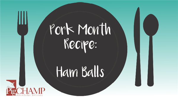 Pork Month Recipe: Ham Balls