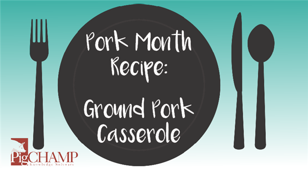 Pork Month Recipe: Ground Pork Casserole