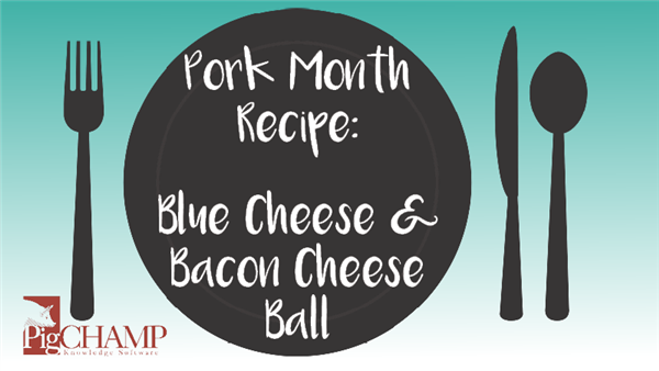 Pork Month Recipe: Blue Cheese & Bacon Cheese Ball